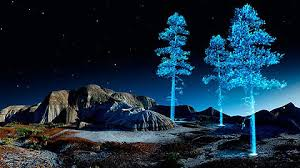 stunning holographic trees by richardson