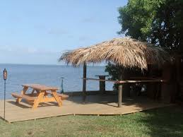 dolphin bay live like in paradise directly on the banana river
