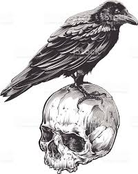 halloween raven background black and white raven bird clip art vector images u0026 illustrations istock