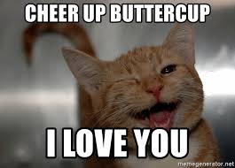 Kitty Meme Generator - cheer up buttercup i love you cheer up kitty meme generator