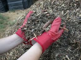 Types Of Garden Mulch The 7 Best Mulches For Winter In Charlotte Nc Lawnstarter
