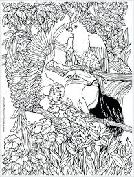coloring pages coloring pages print pictures