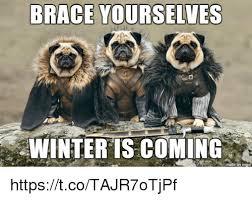 Brace Yourselves Meme - brace yourselves winter is coming httpstcotajr7otjpf brace