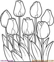 imagenes para colorear rosas para colorear