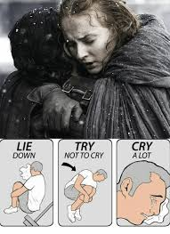 Try Not To Cry Meme - 25 best memes about lie down try not to cry lie down try not