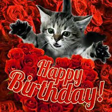 happy birthday to a very special person card 4 category