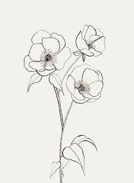 flower simple drawing arst info