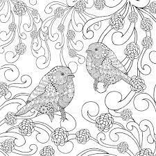 birds coloring page stock vector art 503613604 istock