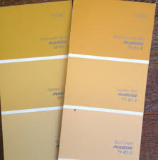july 2013 colour of the month amber plascon spaces