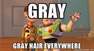 Everywhere Meme Maker - grey hair memes image memes at relatably com