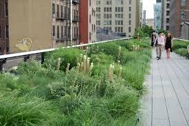 Urban Gardens Chicago Piet Oudolf In Chicago U2013 Gardeninacity