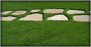 Lawn And Landscape by Lawn Care Service Mn Yard Maintenance Landscape Tree Trimming
