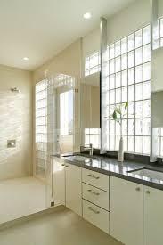 bathroom hardware ideas remarkable glass block decorating ideas