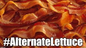 Funny Bacon Meme - bacon imgflip