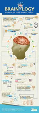 best 25 human facts ideas on interesting facts