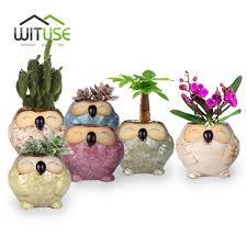 aliexpress com buy wituse cute owl flowerpot ceramic bonsai easy