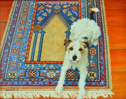 oil cloth rugs make home design ideas