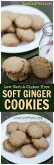 35 low carb sugar free christmas cookies recipes collection