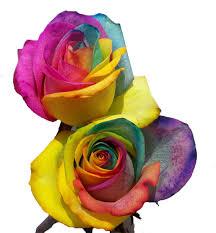 tie dye roses grand rapids florists floral design flowerland