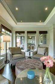 Best  Painted Tray Ceilings Ideas Only On Pinterest Master - Living room ceiling colors
