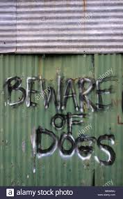 beware of the dogs painted on corrugated iron fence of scrap