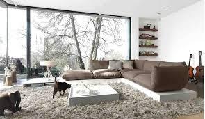 cheap living room rugs living room rugs adventurism co