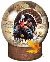 turkey gifs animated gifs search find make gfycat gifs