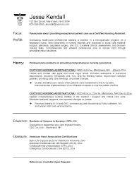 professional nursing resume exles practitioner resume summary pediatric sle entry level