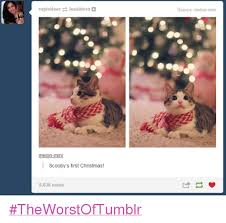Christmas Memes Tumblr - rupindeer uxsidera melon mini scooby s first christmas 8636 notes