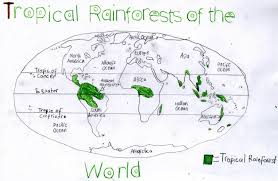 Cuba On A World Map Map Of The World With Rainforest Locations You Can See A Map Of