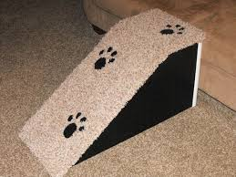 40 best pet accessibility items images on pinterest animals dog