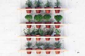 smartness ideas hanging wall planter remarkable design hanging