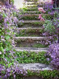 1348 best flower garden images on pinterest flower gardening