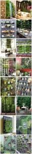 1439 best vertical garden design images on pinterest vertical