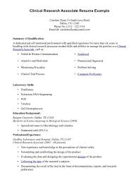Functional Resume Format Examples by 86 Free Downloadable Functional Resume Format Examples