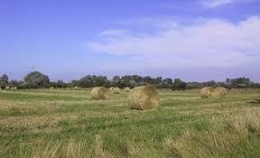 l apprentissage agricole dans les hauts de version longue les paiements pour les maec et les aides en faveur de l