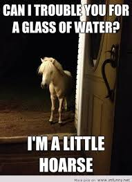 Water Meme - can i trouble you for a glass of water funny horse meme