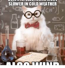 Memes Cold Weather - slower in coldweather darwin weather meme on me me