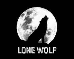 big bad wolf 15 ferocious wolf logo designs