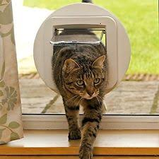Cat Flap Patio Door Microchip Cat Doors And Flaps Ebay
