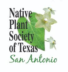 native plants of texas home san antonio chapter npsot