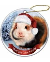 amazing deal on pet gifts abyssinian guinea pig santa hat