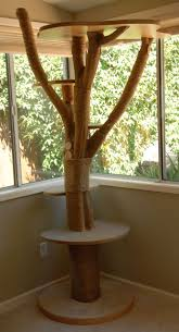 Free Diy Cat Furniture Plans by Best 25 Cat Scratching Tree Ideas On Pinterest Diy Cat Tree