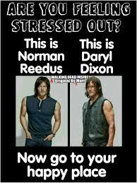 Daryl Meme - the walking dead memes daryl dixon norman reedus norman reedus