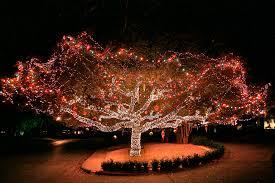 christmas lights wichita ks christmas lights in wichita ks christmas cards