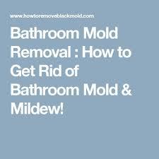 best 25 bathroom mold ideas on pinterest mold in bathroom