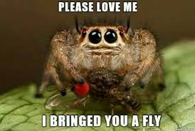 Image 325848 Misunderstood Spider Know - please love me cute creatures pinterest spider insects and
