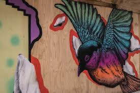 free picture bird graffiti street wall art
