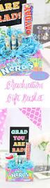 Graduation Gift Basket Diy Graduation Gift Basket Ideas Lifestyle Blog