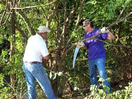 Ohio Nature Activities images Volunteer activities get involved ohio river foundation JPG